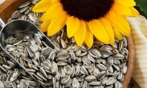 Жареные семечки: полезные свойства, о которых многие не знают