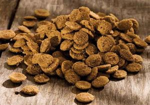 Лечебный и диетический корм для собак