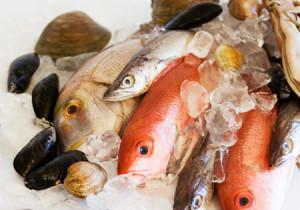 Кулинарные достоинства рыбы и морепродуктов