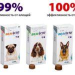 Где приобрести жевательные таблетки для собак «Бравекто» от блох и клещей