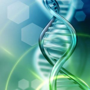 Анализ ДНК: что может поведать ваша генетическая карта?