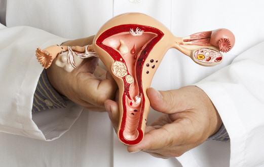 Консультация с врачом-гинекологом в Люберцах