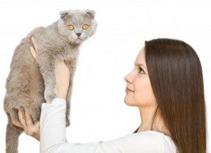 Зачем нам нужен ветеринар?
